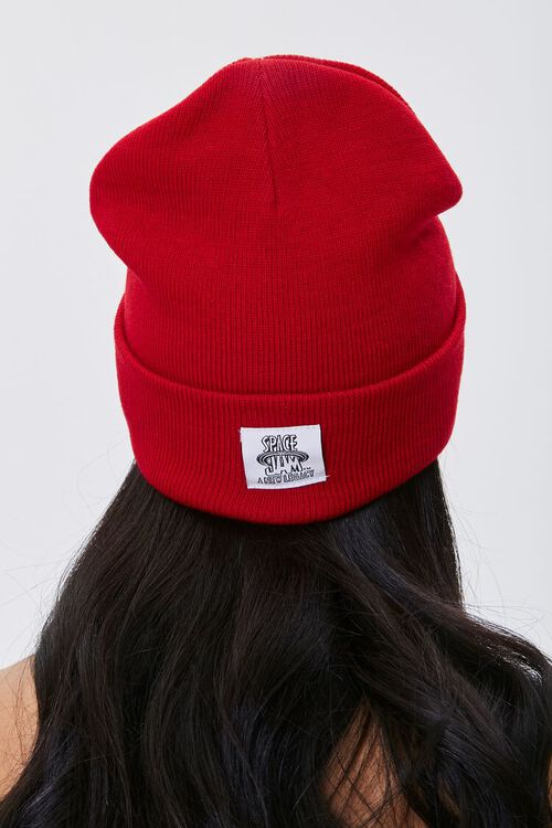 Sylvester Embroidered Graphic Beanie, image 2