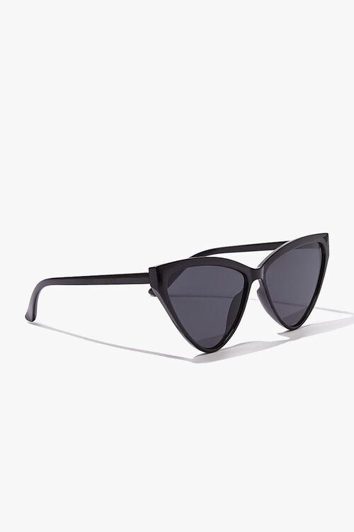 BLACK/BLACK Cat-Eye Tinted Sunglasses, image 2