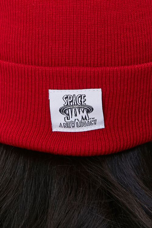 Sylvester Embroidered Graphic Beanie, image 4