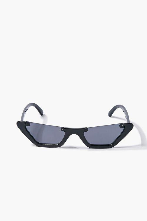 Tinted Cat-Eye Sunglasses, image 1