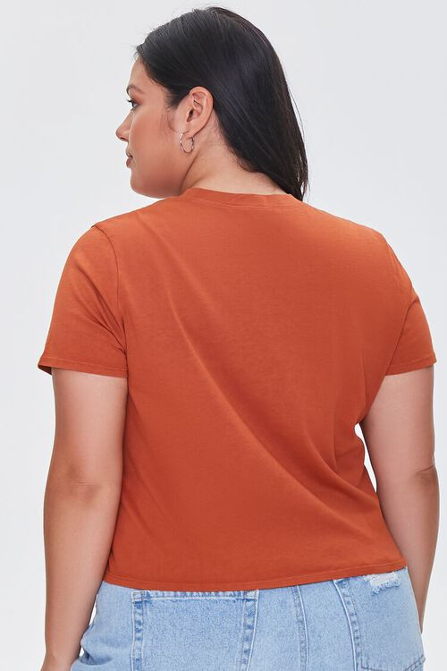 Plus Size Mineral Wash Tee, image 3