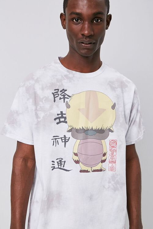 Avatar The Last Airbender Graphic Tee, image 1