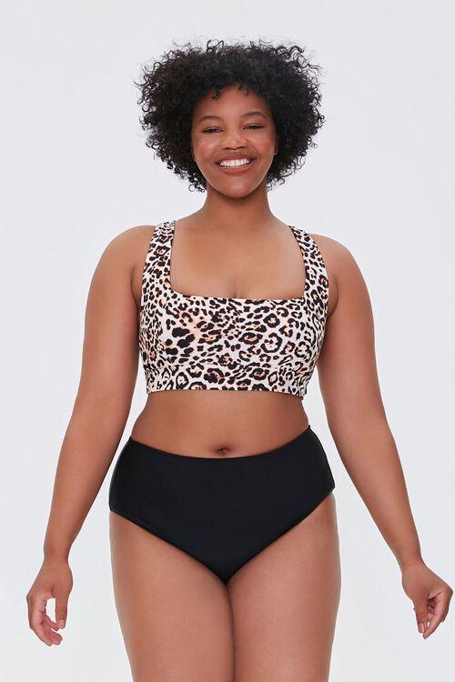 Plus Size High-Rise Bikini Bottoms, image 5