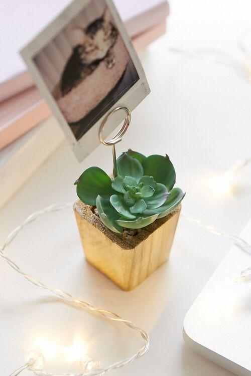 Succulent Photo Holder, image 1