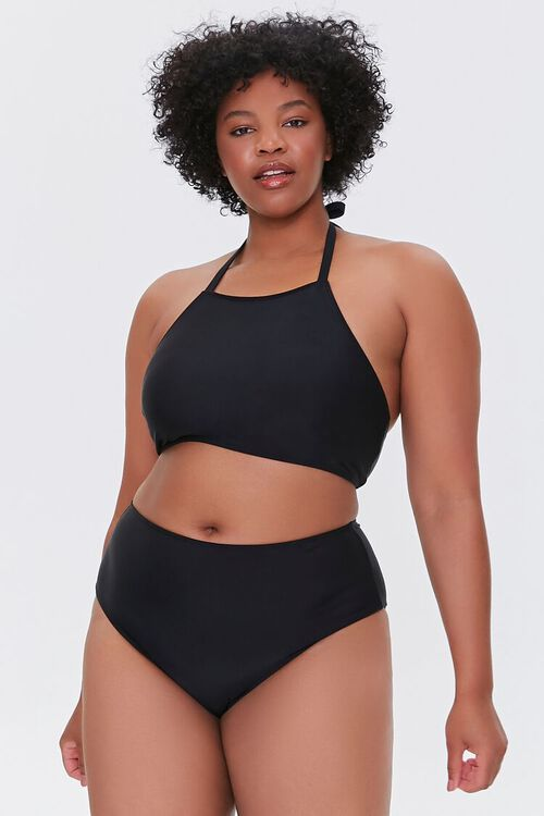 Plus Size High-Rise Bikini Bottoms, image 1