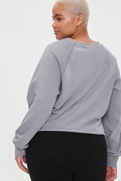 Plus Size Raglan Pullover, image 3