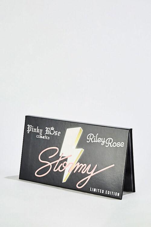 Stormy Eyeshadow Palette, image 3