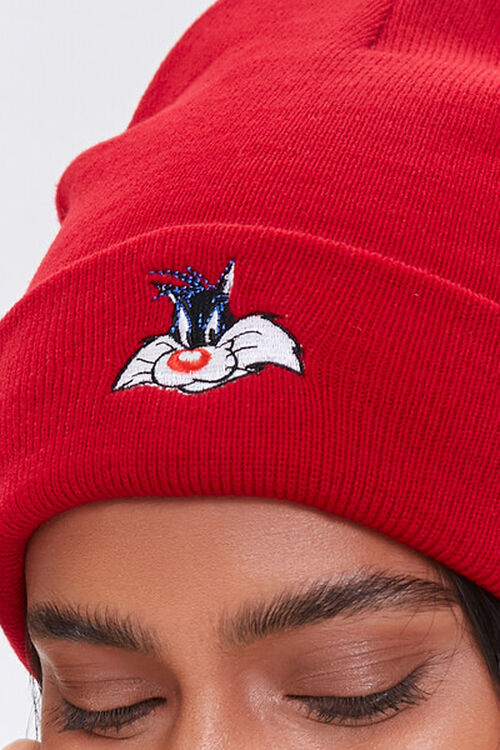 Sylvester Embroidered Graphic Beanie, image 3