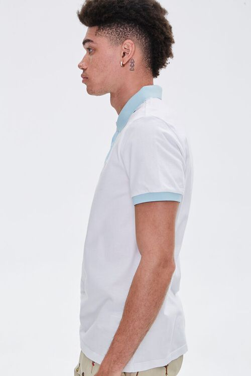 Palm Tree Embroidered Graphic Polo, image 3