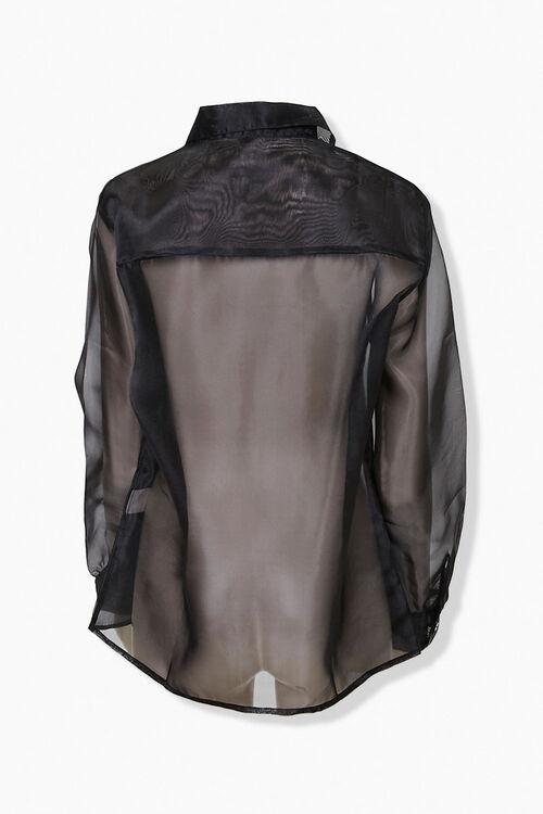 Sheer Organza Shirt, image 3